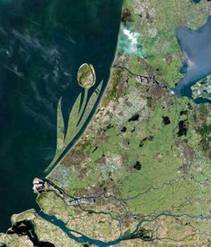 Coste olandesi a Forma di Tulipano