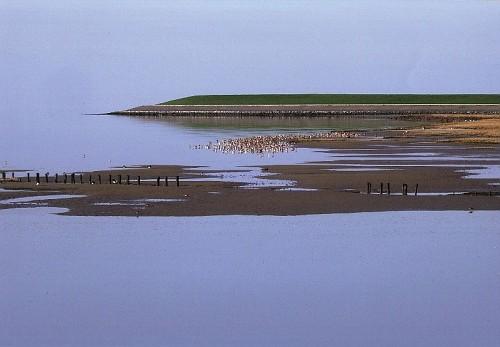 Le Isole di Wadden